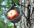 Fruit Feeder Pod