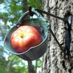 Fruit Feeder Pod